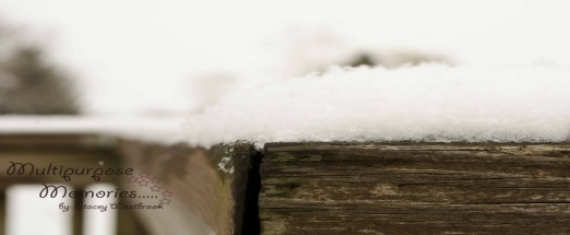 snowwoodcover
